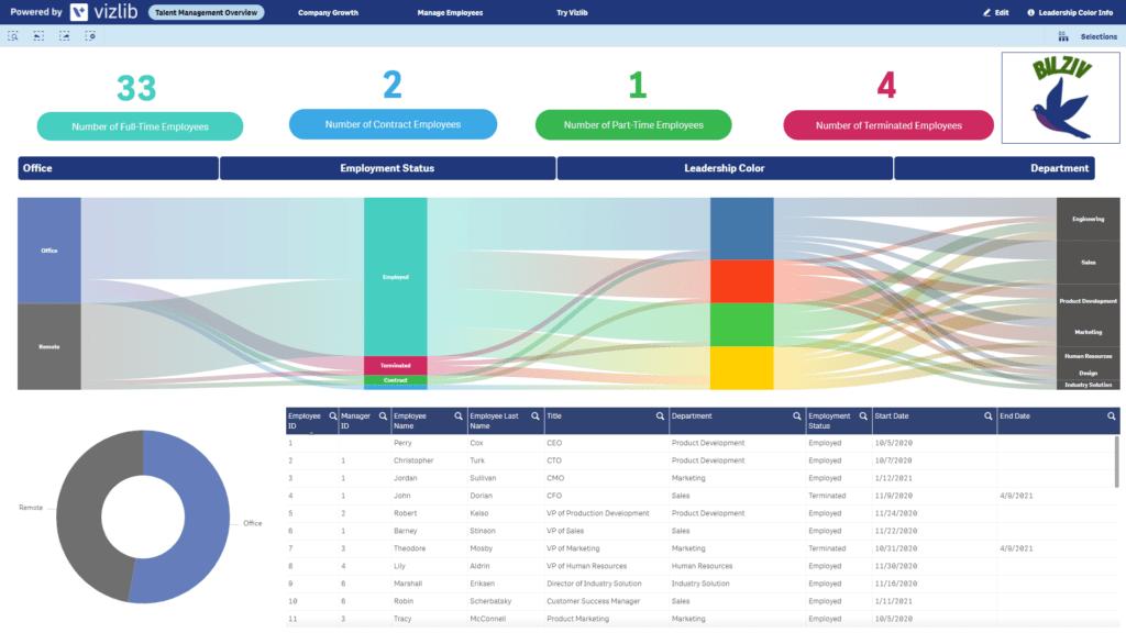 Vizlib talent management dashboard
